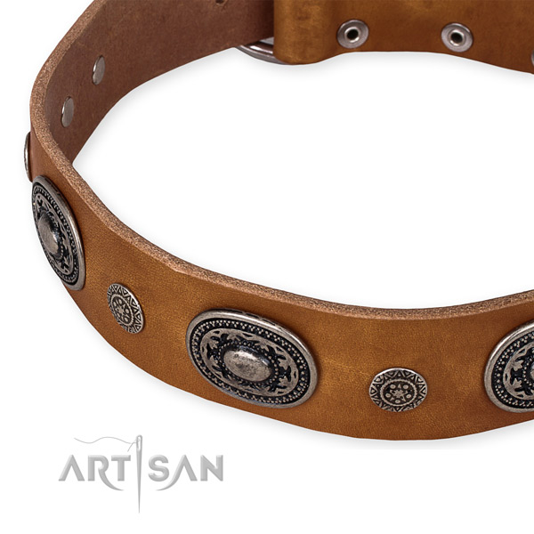 Durable full grain natural leather dog collar created for your handsome dog