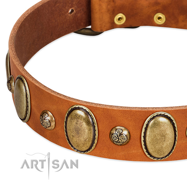 Genuine leather dog collar with fashionable adornments