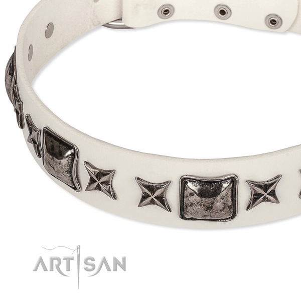 Comfy wearing embellished dog collar of top notch full grain genuine leather