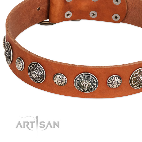 Full grain leather collar with corrosion resistant traditional buckle for your handsome four-legged friend