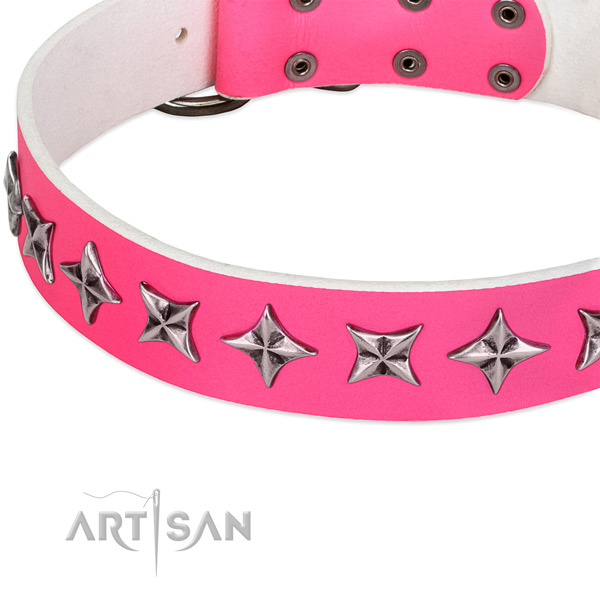 Stylish walking studded dog collar of strong full grain natural leather