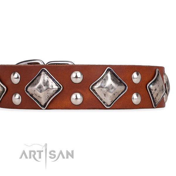 Full grain leather dog collar with top notch strong adornments