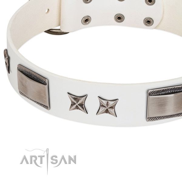 Quality natural leather dog collar with rust-proof hardware