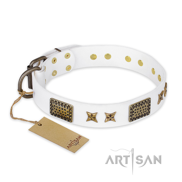 Studded full grain leather dog collar with durable buckle