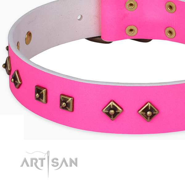 Fine quality leather collar for your handsome pet