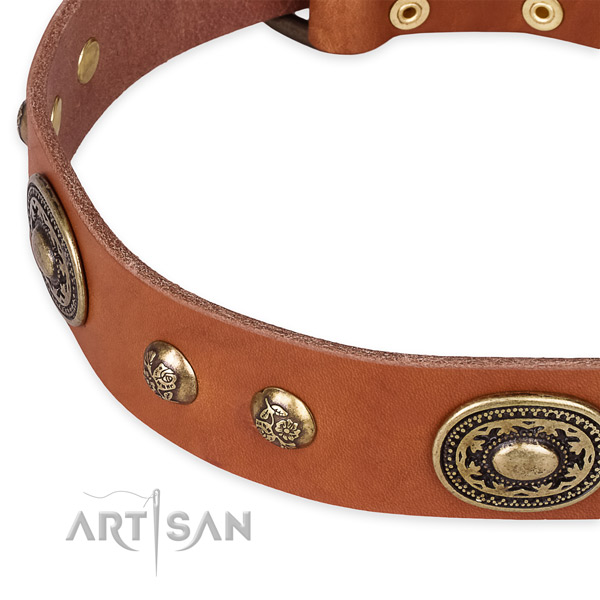 Exquisite natural leather collar for your stylish doggie