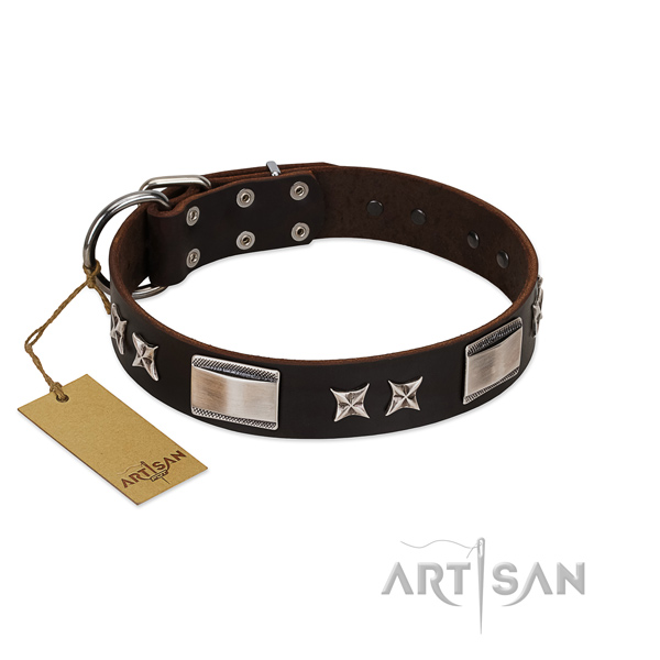 Handmade dog collar of natural leather