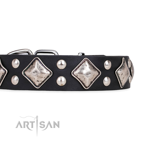 Full grain leather dog collar with significant rust resistant embellishments