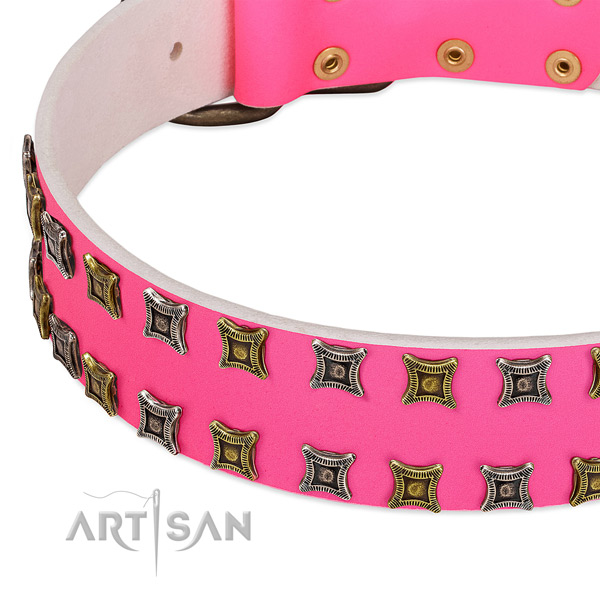Genuine leather dog collar with awesome studs