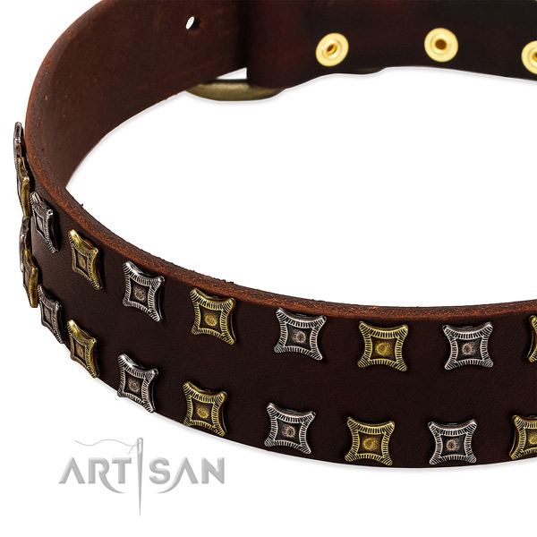 Top rate natural leather dog collar for your beautiful canine
