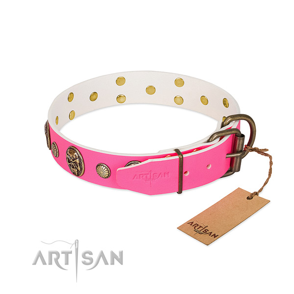Strong adornments on natural genuine leather dog collar for your dog