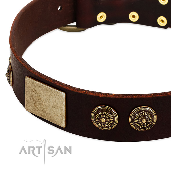 Reliable buckle on genuine leather dog collar for your canine