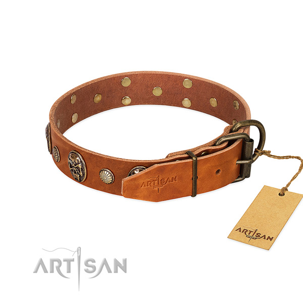 Strong traditional buckle on full grain leather collar for basic training your four-legged friend