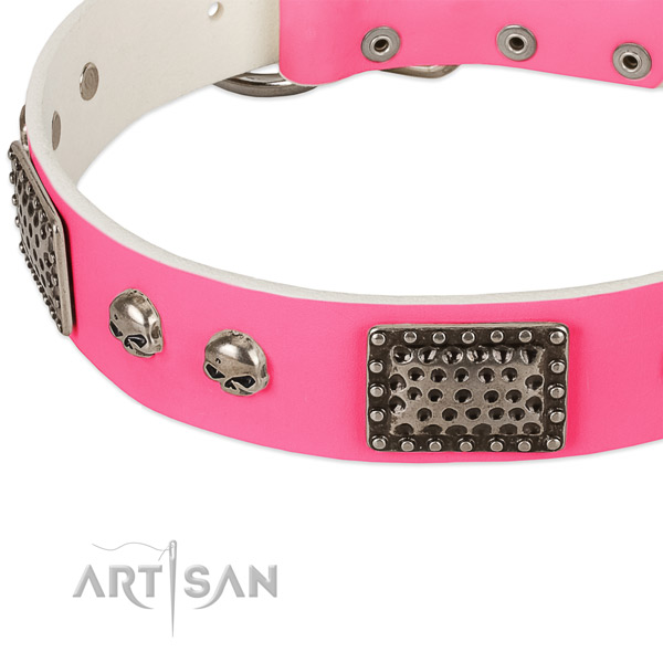 Reliable traditional buckle on leather dog collar for your canine