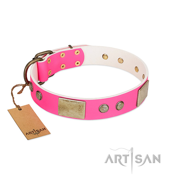 Easy adjustable leather dog collar for daily walking your four-legged friend