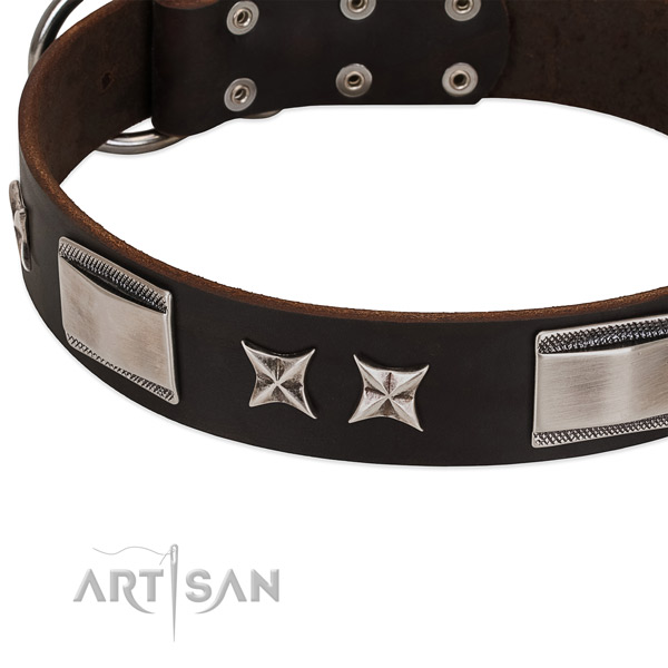 Perfect fit collar of genuine leather for your attractive dog