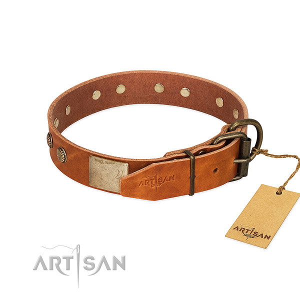 Rust-proof hardware on daily use dog collar