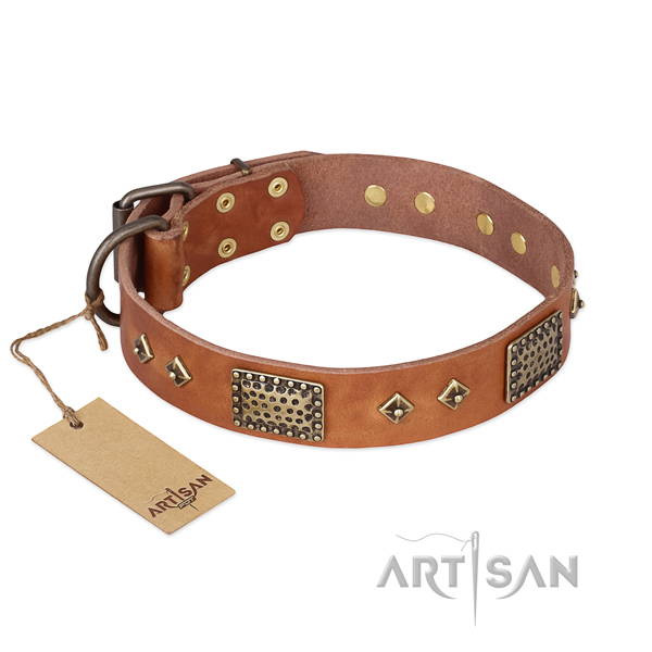 Stylish genuine leather dog collar for basic training