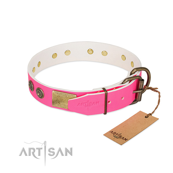 Rust resistant fittings on full grain genuine leather collar for fancy walking your dog