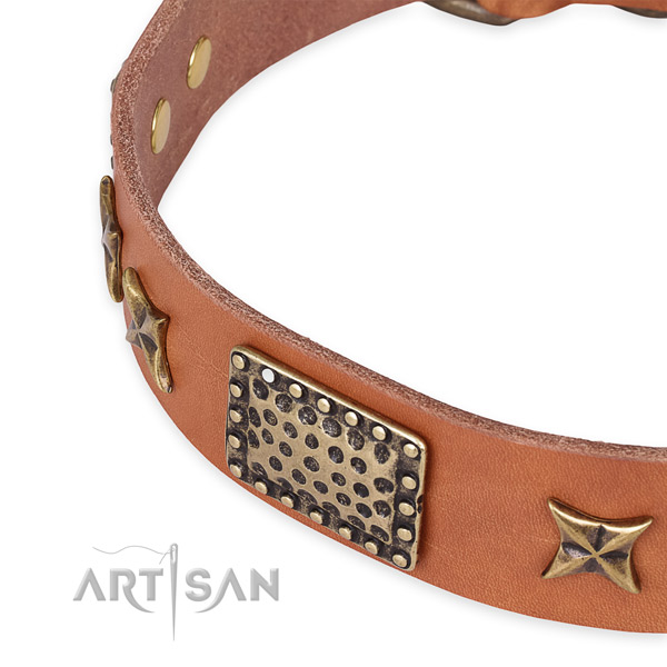 Full grain natural leather collar with corrosion resistant hardware for your beautiful dog