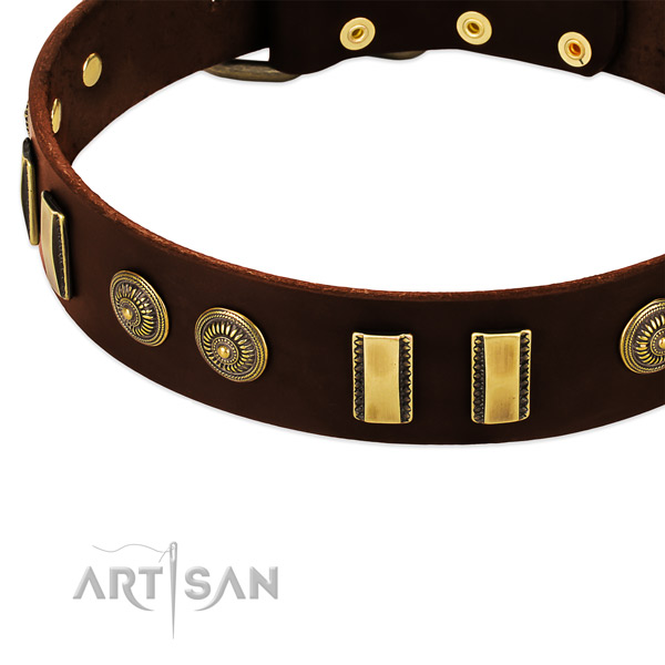 Durable adornments on full grain leather dog collar for your dog