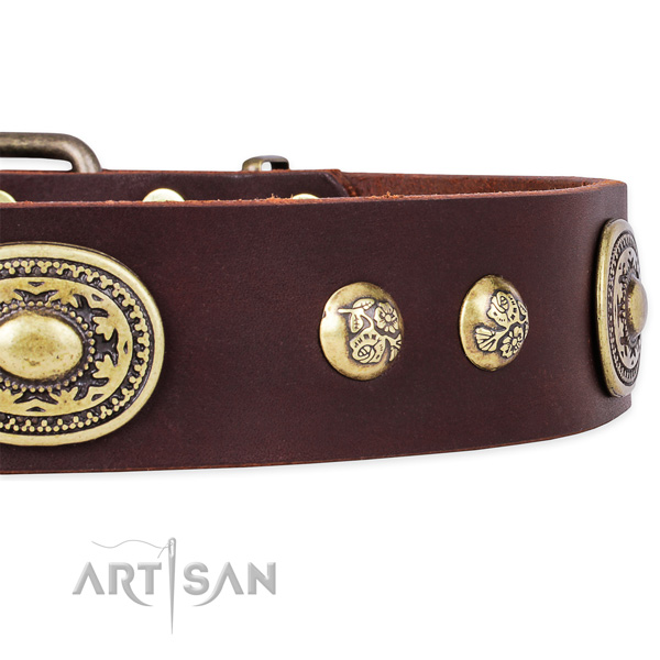 Easy to adjust full grain genuine leather collar for your beautiful canine