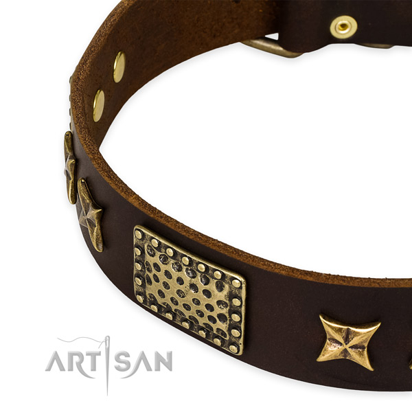 Full grain leather collar with corrosion proof traditional buckle for your beautiful pet