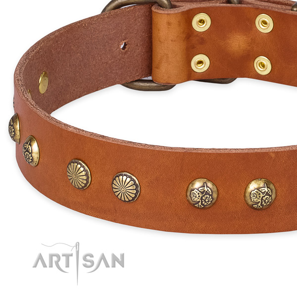 Leather collar with corrosion proof D-ring for your handsome pet