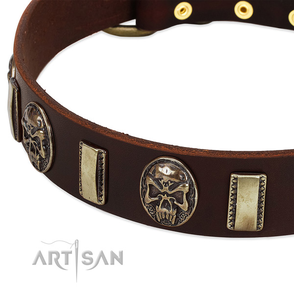 Rust resistant buckle on natural genuine leather dog collar for your dog