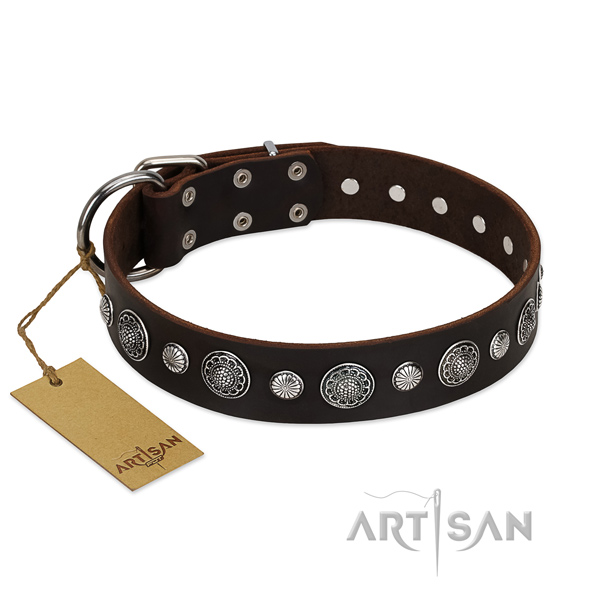 Finest quality full grain leather dog collar with amazing adornments