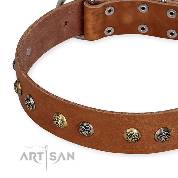Full grain genuine leather dog collar with unique durable studs
