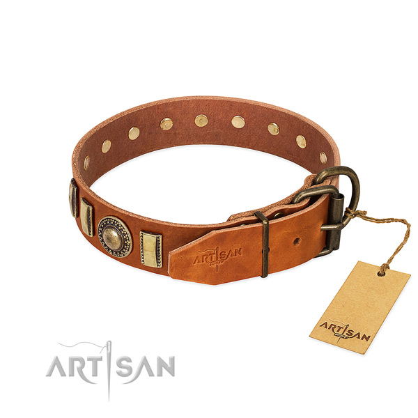 Adorned natural leather dog collar with durable fittings