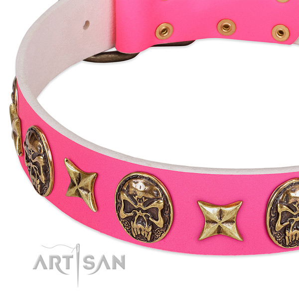 Full grain leather dog collar with remarkable decorations
