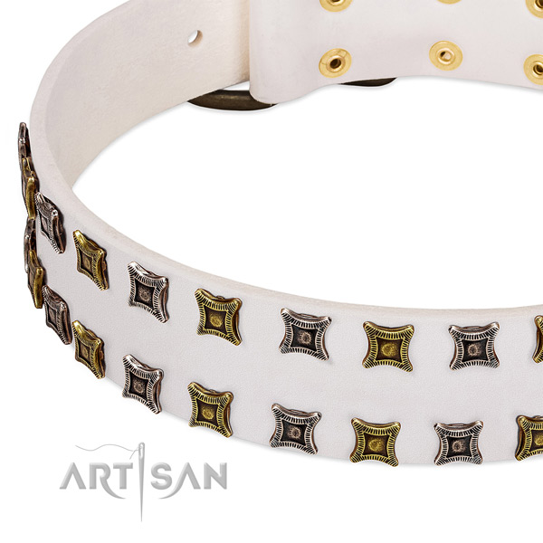 Leather dog collar with decorations for your impressive doggie