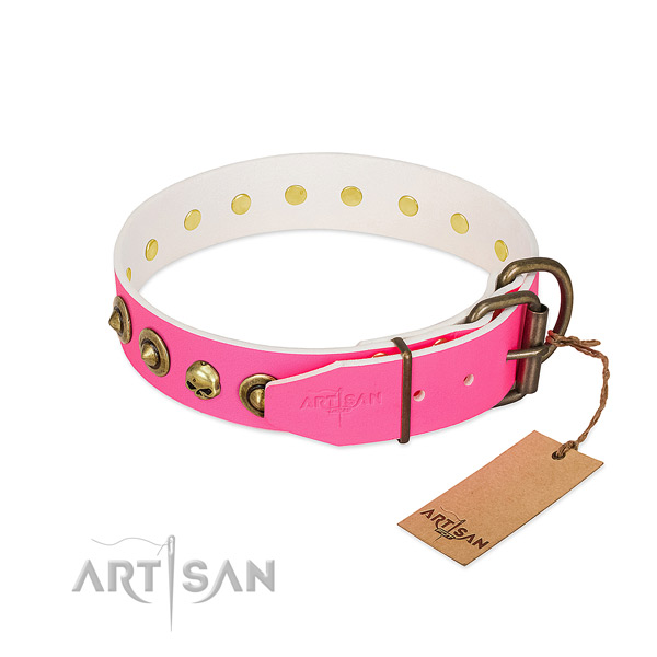 Genuine leather collar with stylish design embellishments for your canine