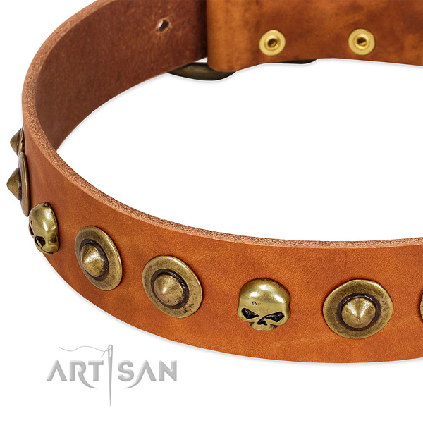Top notch adornments on full grain natural leather collar for your pet