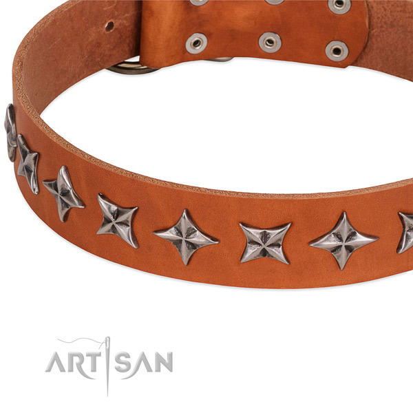 Comfy wearing embellished dog collar of best quality full grain natural leather