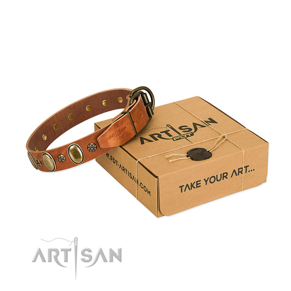 Handy use top rate genuine leather dog collar with adornments