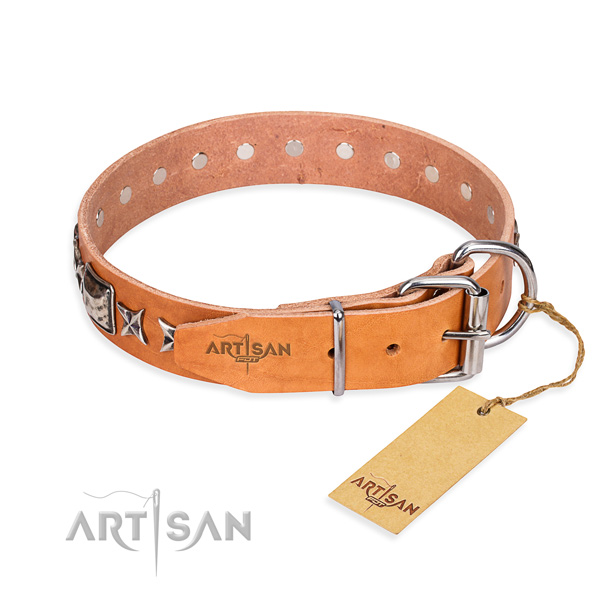 Reliable decorated dog collar of genuine leather