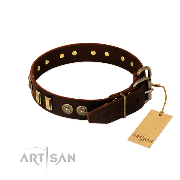 Strong studs on natural leather dog collar for your dog