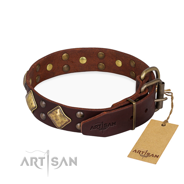 Leather dog collar with stunning corrosion resistant studs