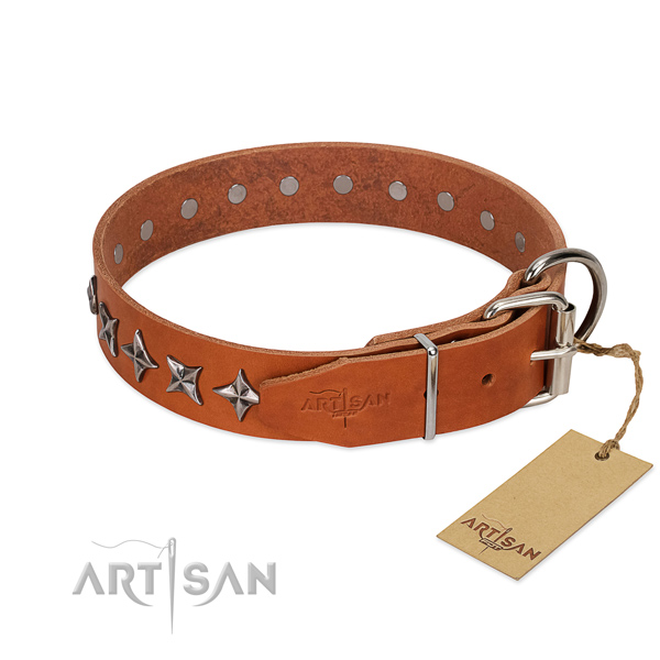 Comfy wearing embellished dog collar of top notch genuine leather