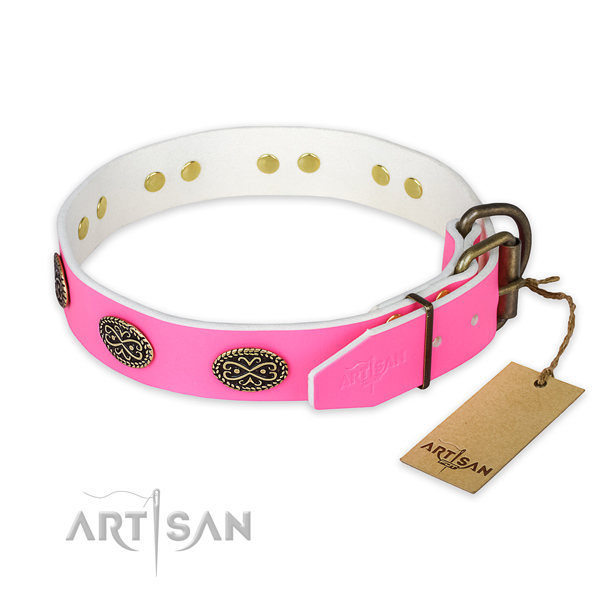 Corrosion proof embellishments on daily walking dog collar