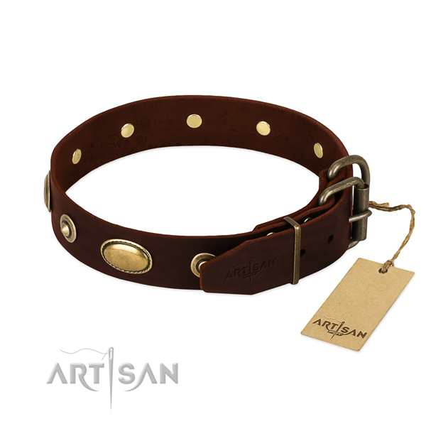 Rust resistant studs on leather dog collar for your four-legged friend