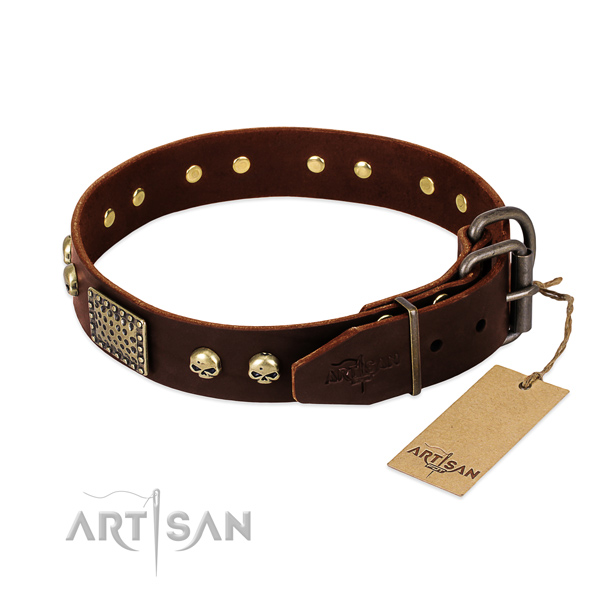 Rust resistant adornments on handy use dog collar