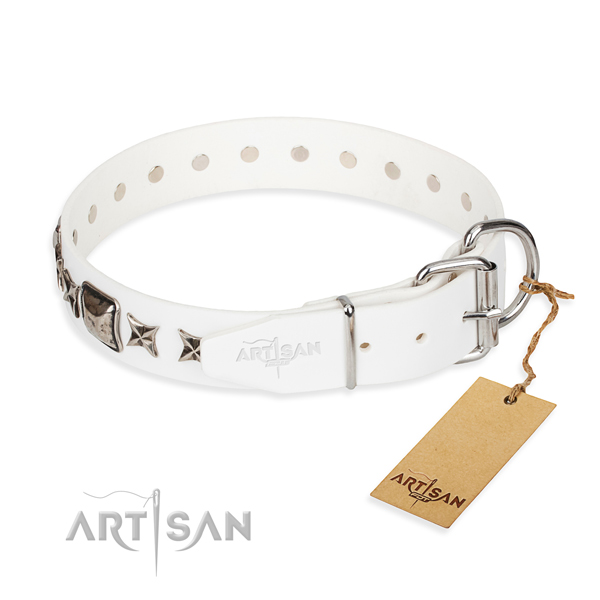 Reliable embellished dog collar of full grain genuine leather