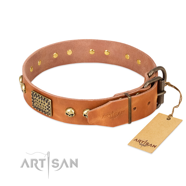 Strong buckle on everyday use dog collar