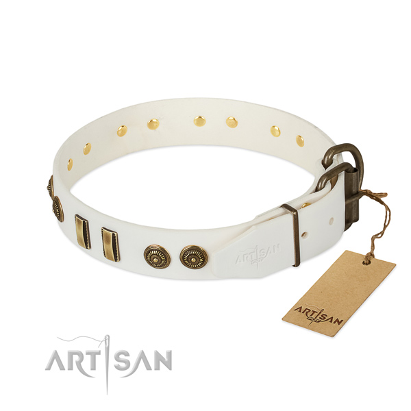 Strong D-ring on genuine leather dog collar for your four-legged friend
