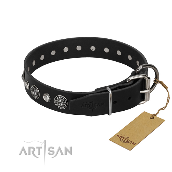 Top notch natural leather dog collar with stylish embellishments
