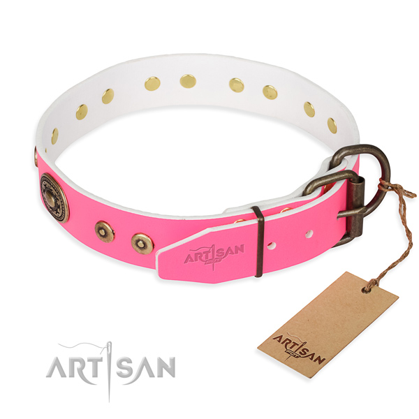 Full grain leather dog collar made of reliable material with durable embellishments